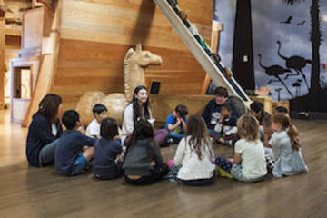 Community Council in Noah's Ark