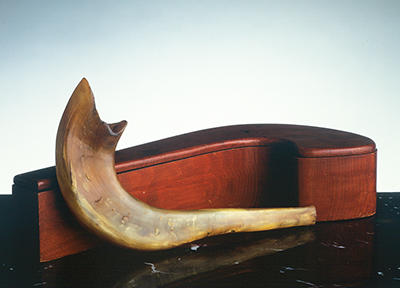 shofar-and-case